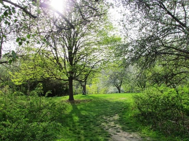 arboretum may